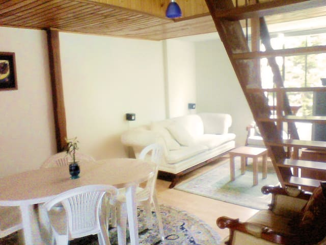 Nice & comfy Penthouse for 7 people - Bogota - Apartment