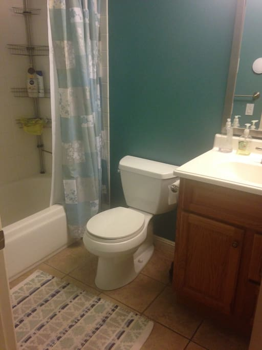 Guest bathroom, shared only part time with son.