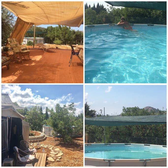 Terras & swimming pool