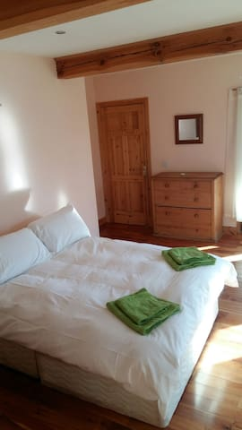 Lovely ensuite Double room with own Entrance. - Mountshannon - Dům