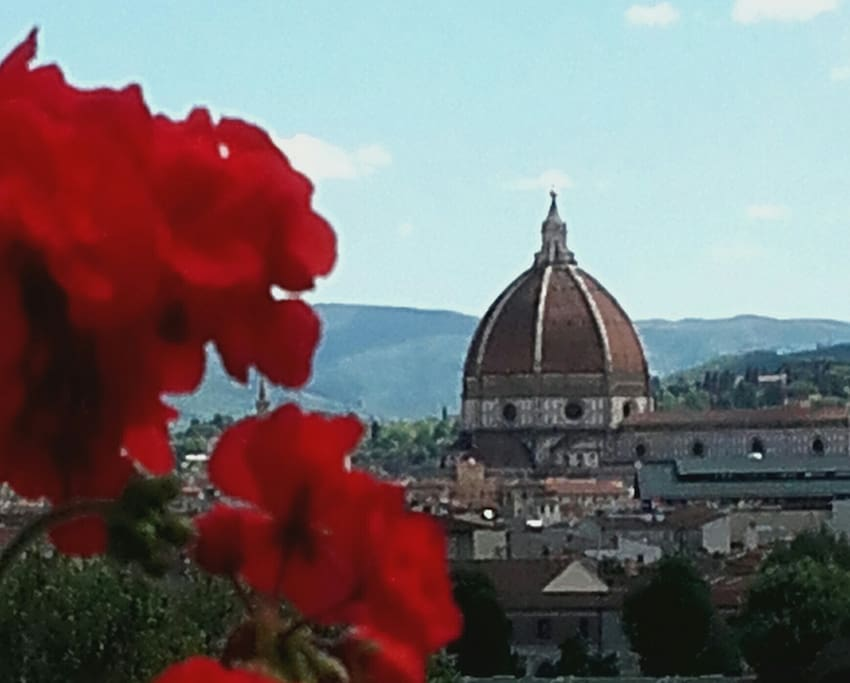 Terrazzo vista Duomo