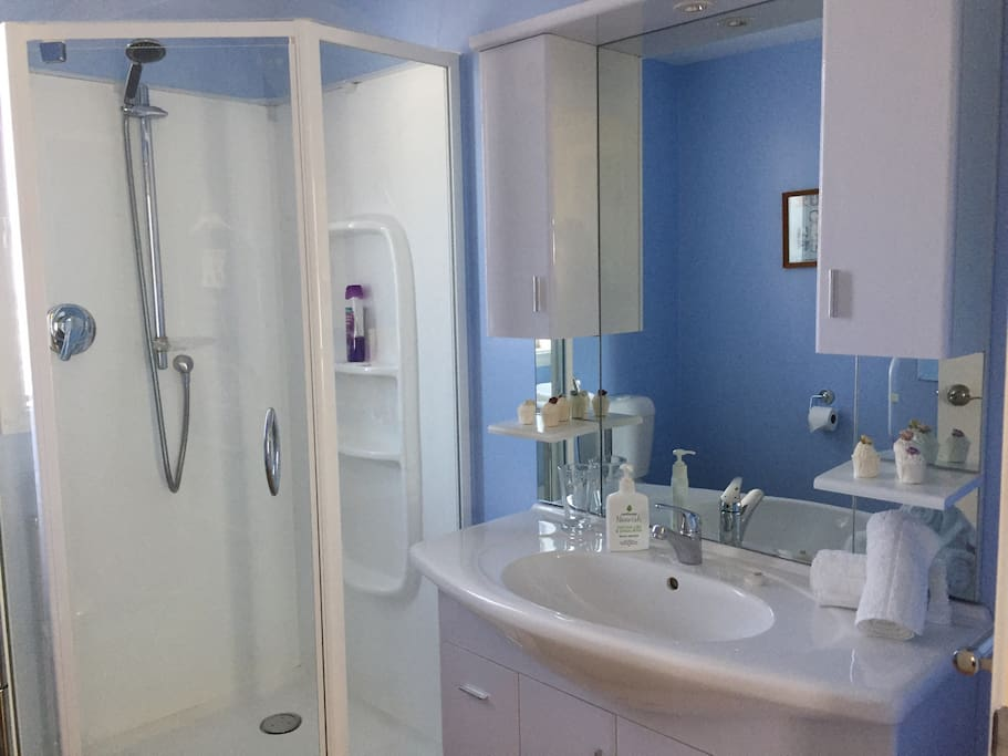 Privacy of your own bathroom which is through your living room into the hallway of our home.