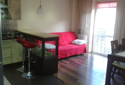 Large Luxury Duplex just 5 km from Main Square - Kraków - Byhus