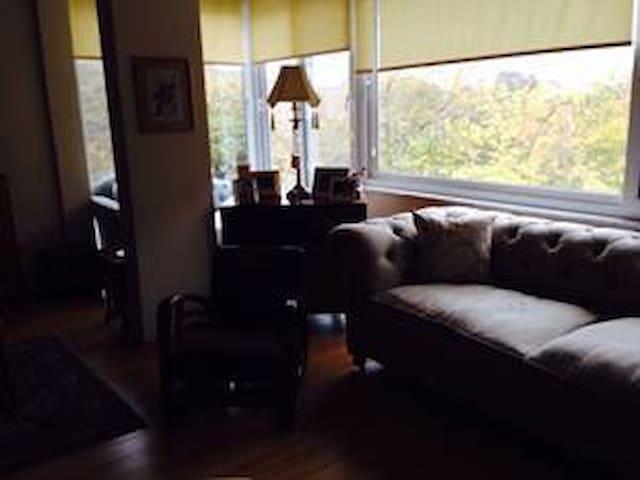 amazing flat!!! - bakırköy - Apartemen