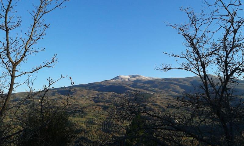"""Nella  dolce collina di Seggiano """"Dimora Toscana"""""""