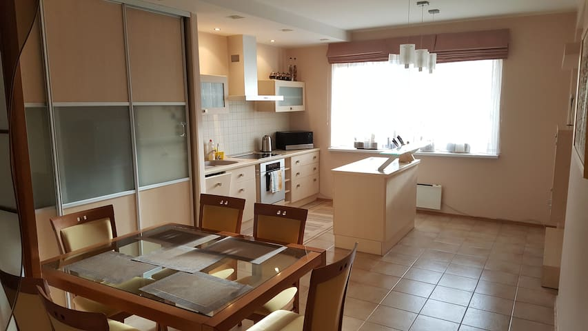 Very specious and stylish 2 bedroom apartment - Vilnius - Apartment