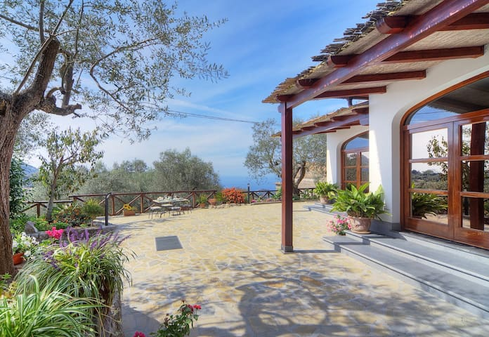 The villa is surrounded by a large paved outdoor area, furnished with sun loungers.