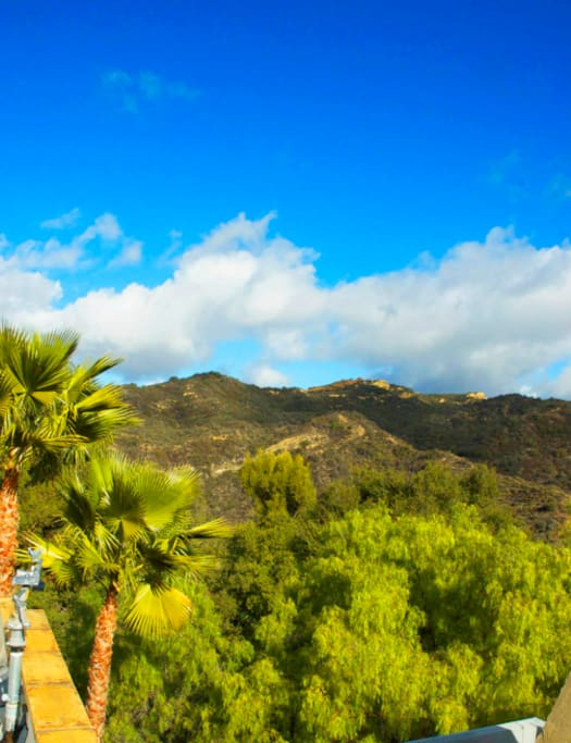 ...further surrounded by thousands of acres of the Santa Monica Mountains, the largest urban park in America.
