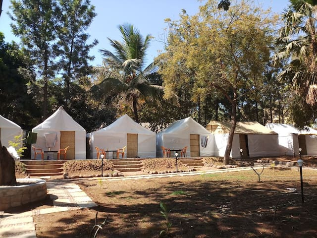 Hampi Island Tent Stays