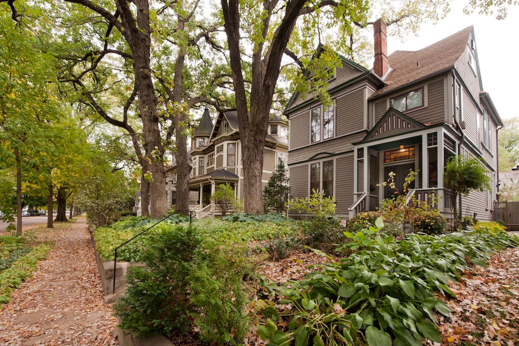 Our Victorian house, in a neighborhood of stately mansions, is surrounded by majestic oaks.