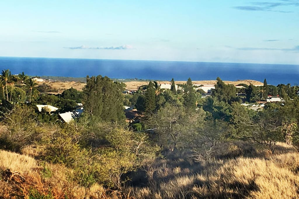 PANORAMIC OCEAN VIEW.