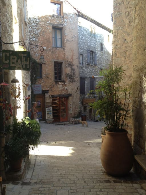 The house is on a cute little Medieval street - right in the heart of Tourrettes sur Loup