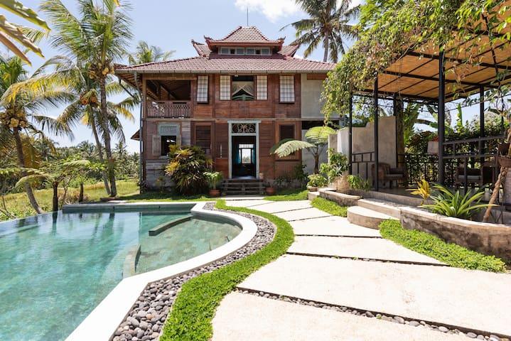 Rumah Shoji~Ubud's Hidden Gem and Restful Paradise