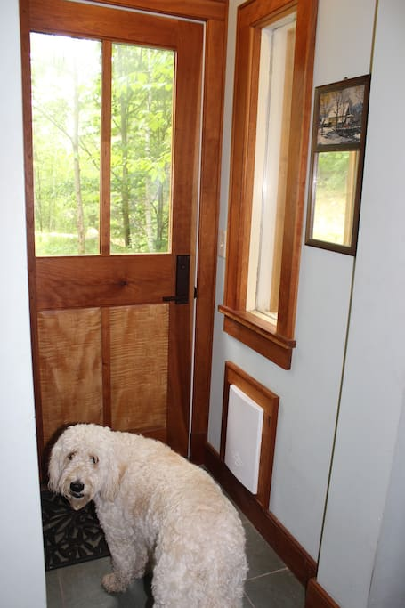 Front door and doggy door (can be closed)