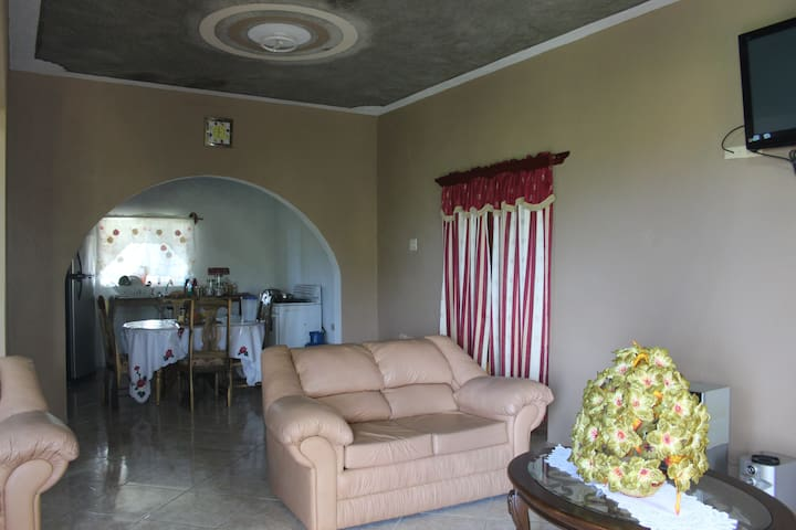 Living + Kitchen View