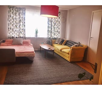Large room with sofa bed - 스톡홀름