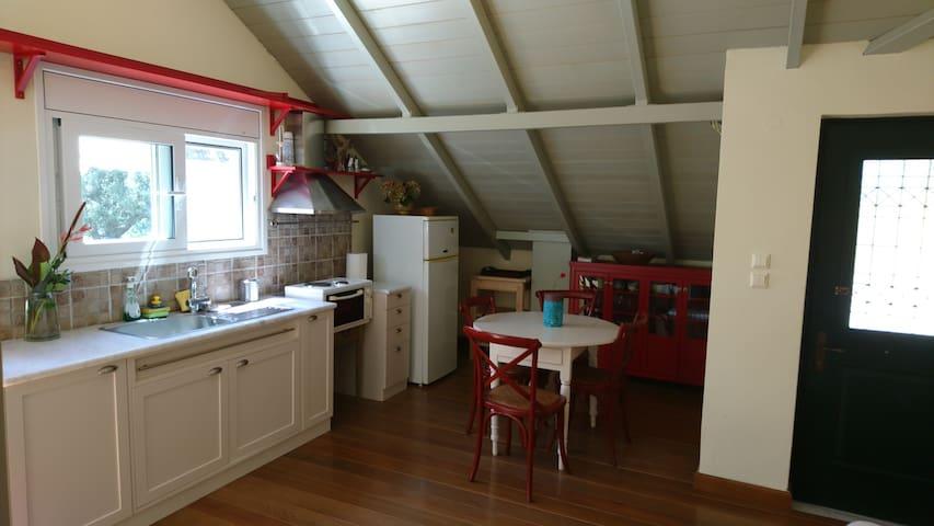 Ikarian attic-house in amazing green surroundings.