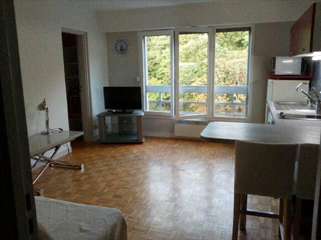 Appartement quai de Saône, 35 m² et parking privé