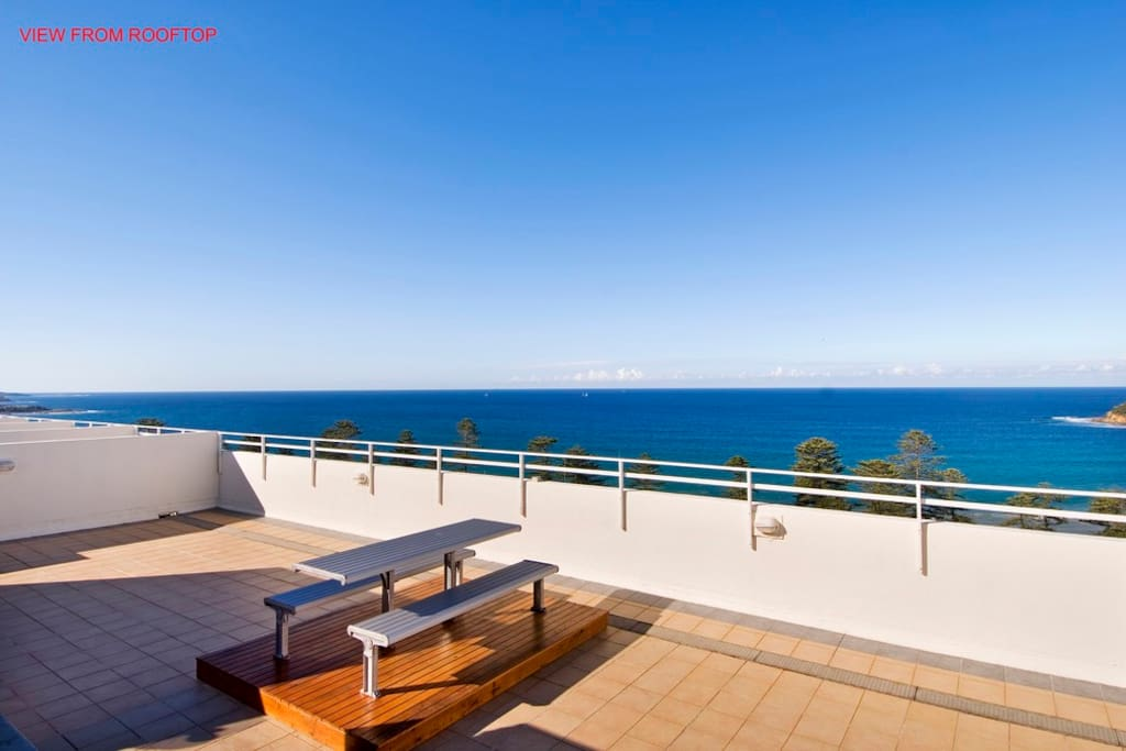 Rooftop terrace with bbq area and plunge pool