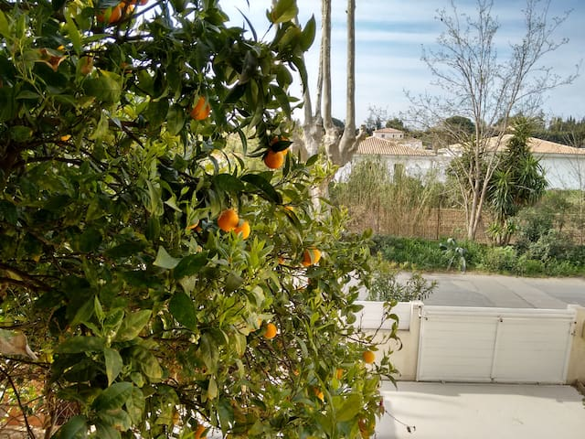 HOUSE FOR 8 PEOPLE NEAR CANET BEACH - Perpignan - Dom