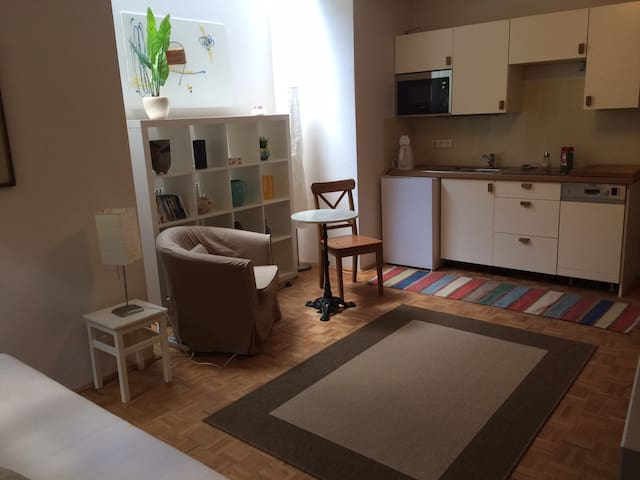 studio apartment in private house - Salzburgo