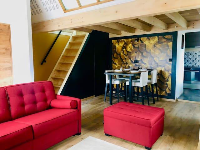 Superbe duplex climatisé et moderne