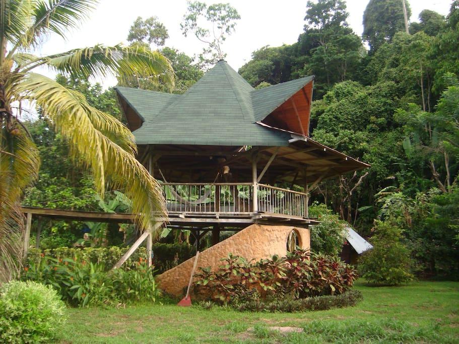 Vista de la cabaña con bosque atrás, donde se pueden observar micos, iguanas, tucanes y mucho más.