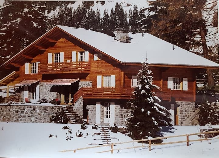 Romantic Family Chalet Ideally Situated