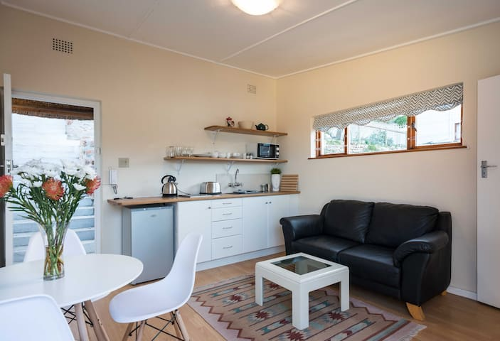 Living area with kitchenette