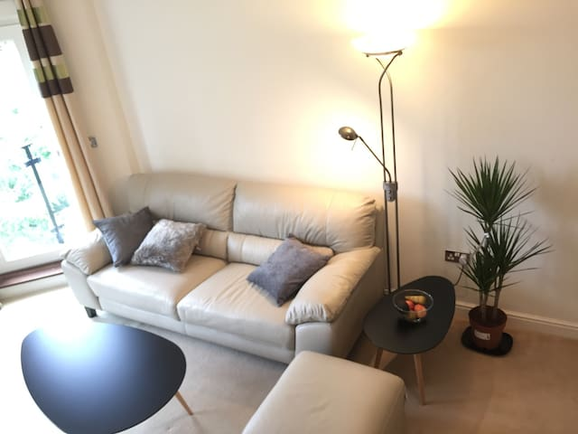 Lovely Appartment North London - Londres - Apartamento