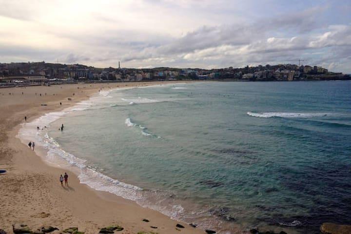 Stunning Bondi Beach Ocean View - Bondi Beach