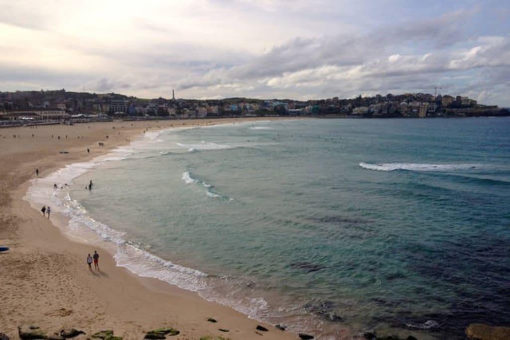 Superbe vue sur l oc an de bondi beach appartements - Appartement de ville vue ocean sydney ...