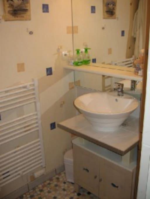 Salle d'eau avec douche et lavabo. WC séparé