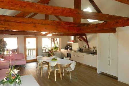 Herzlich willkommen als unser Gast! - Saint-Légier-La Chiésaz - Penzion (B&B)