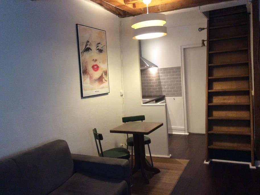 vue du salon + cuisine ouverte et accès à la chambre par échelle de meunier