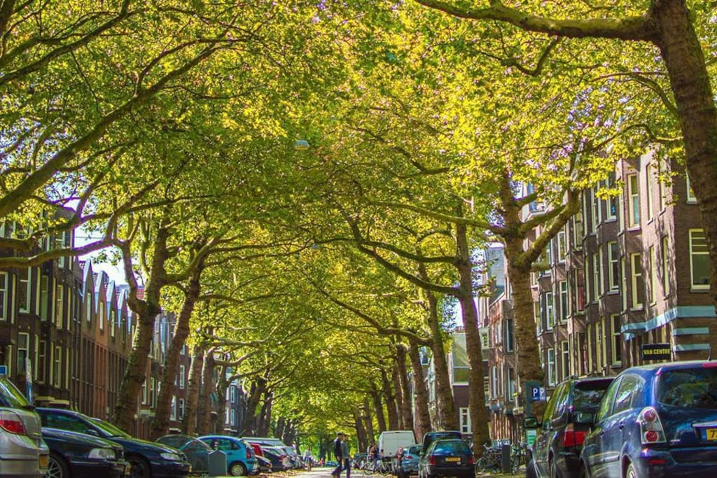 Our street Graaf Florisstraat. Picture credit: Gers! Magazine