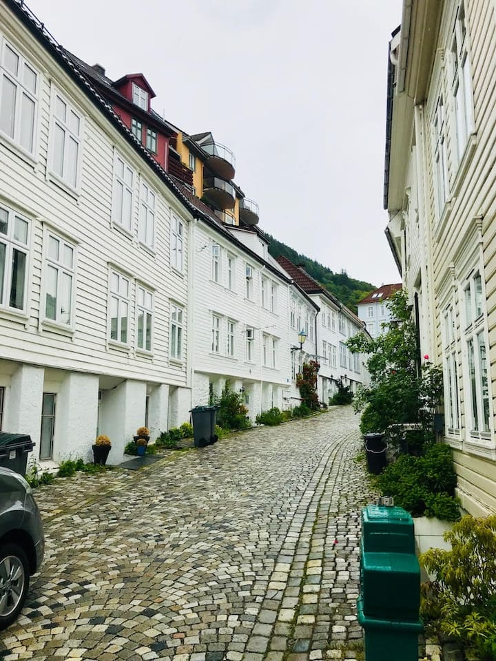 Charming apt. in the heart of Bergen  -Pro Managed
