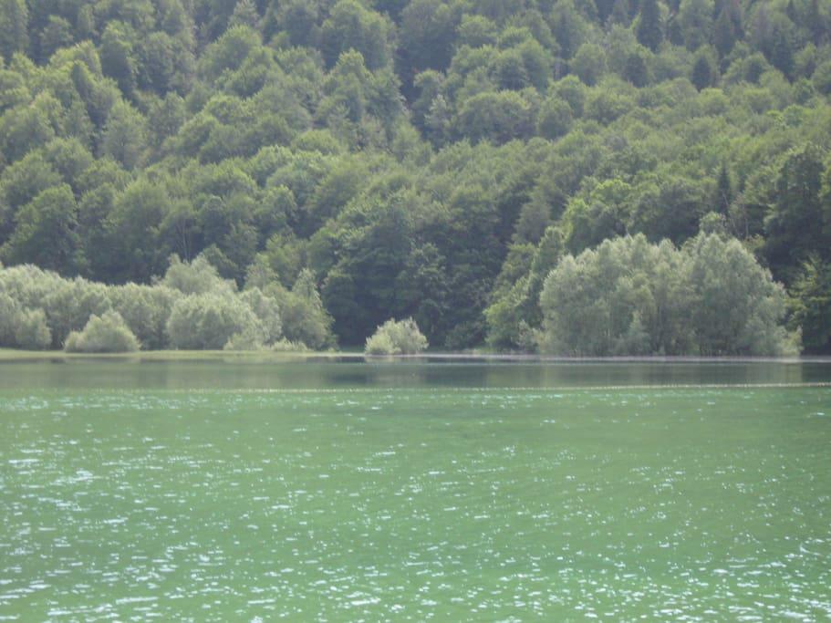 National park lake Biogradsko