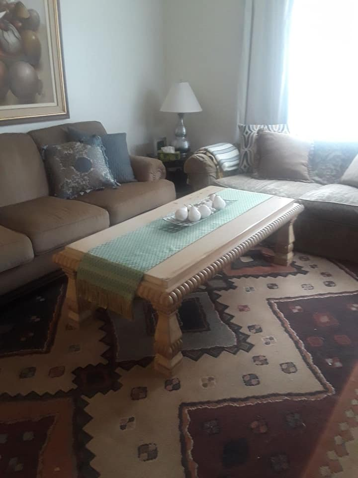 COZY ROOM AND PET FRIENDLY IN PALM HARBOR FL