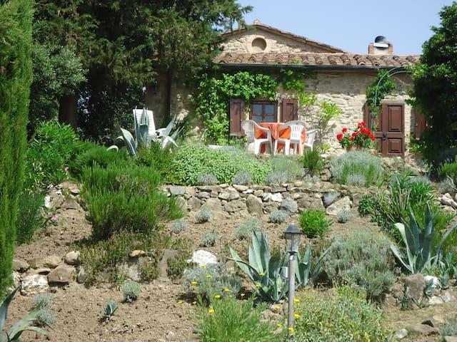 Rustico in Alleinlage auf Hügel - Ponteginori (Montecatini Val di Cecina) - Apartamento