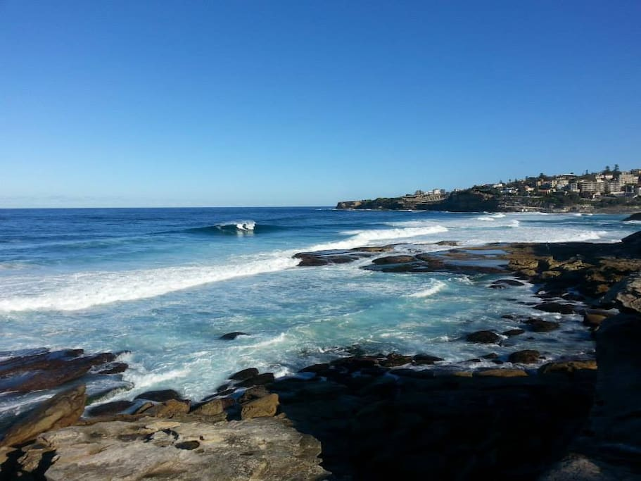 Walk the Bondi to Coogee coastal walk and take in the breathtaking views.