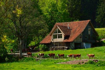 Hüsli am Untermühlbachhof - Sankt Georgen