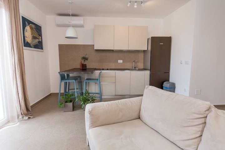 Studio apartman PINKO