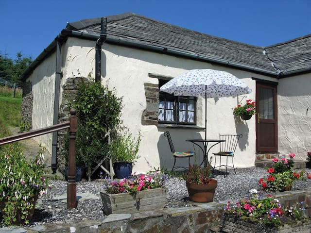 Windbury Cottage - Bideford - Hus