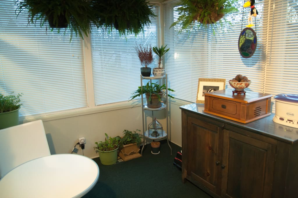 The sunroom, where we also grow our herbs during the winter and have a record player to listen to year-round.
