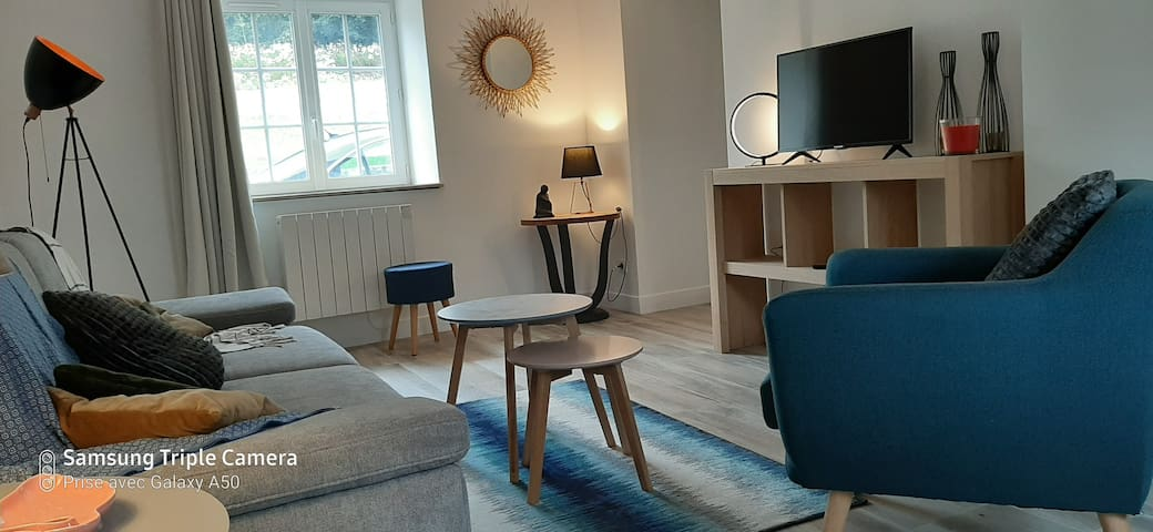 Salon avec canapé convertible, TV