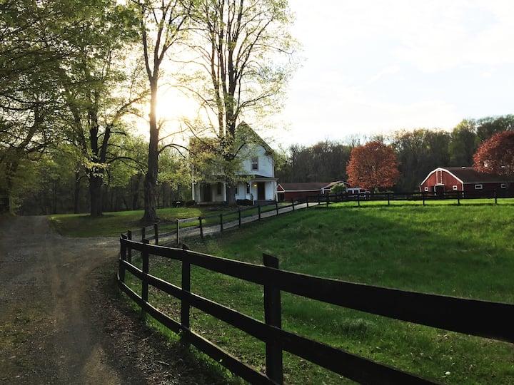 1860s charming farmhouse
