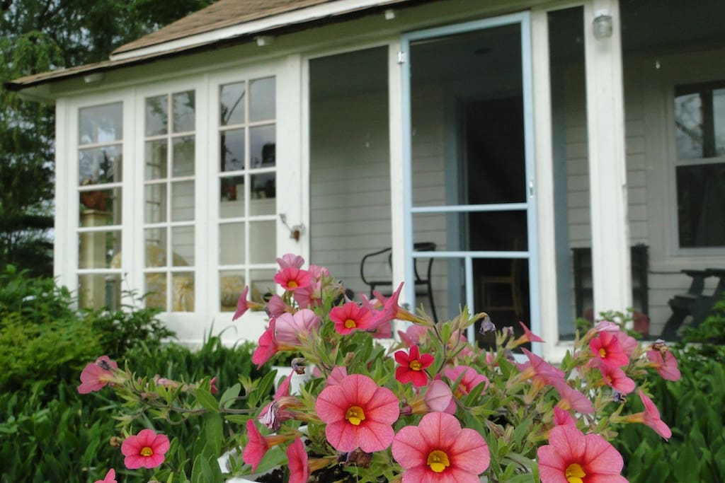 flowers welcome you to the house; front porch newly painted summer 2014!