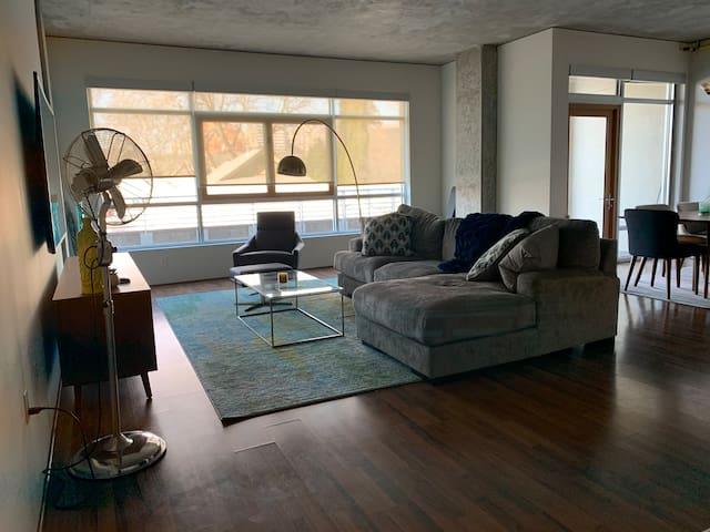 Entire Upscale Luxury loft in vibrant midtown, Sac