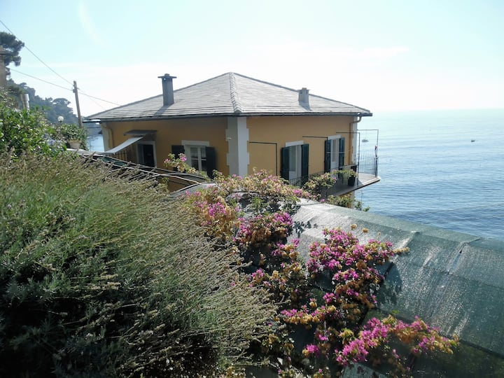 Wonderful House with garden in Camogli